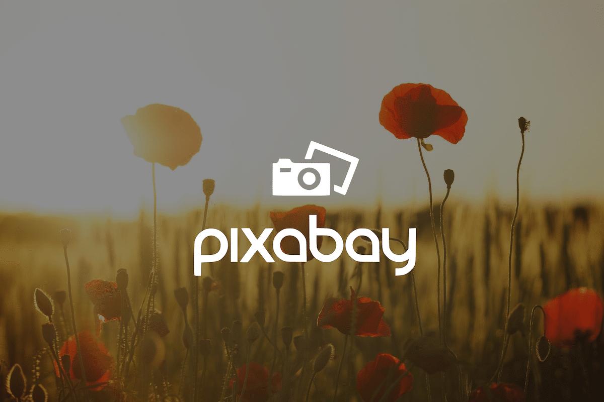 pixabay logo et fond floral